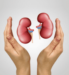 Nephro & Kidney Transplant in Delhi